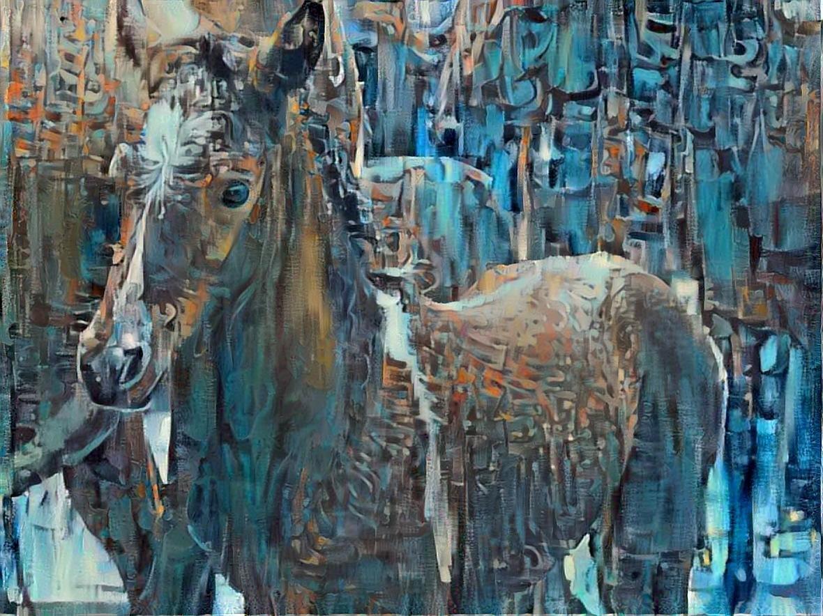 Horse _4060