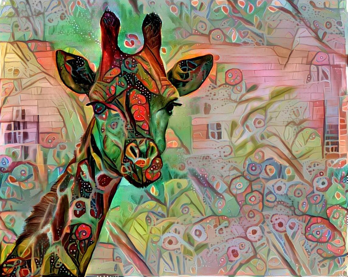 Giraffe _4340