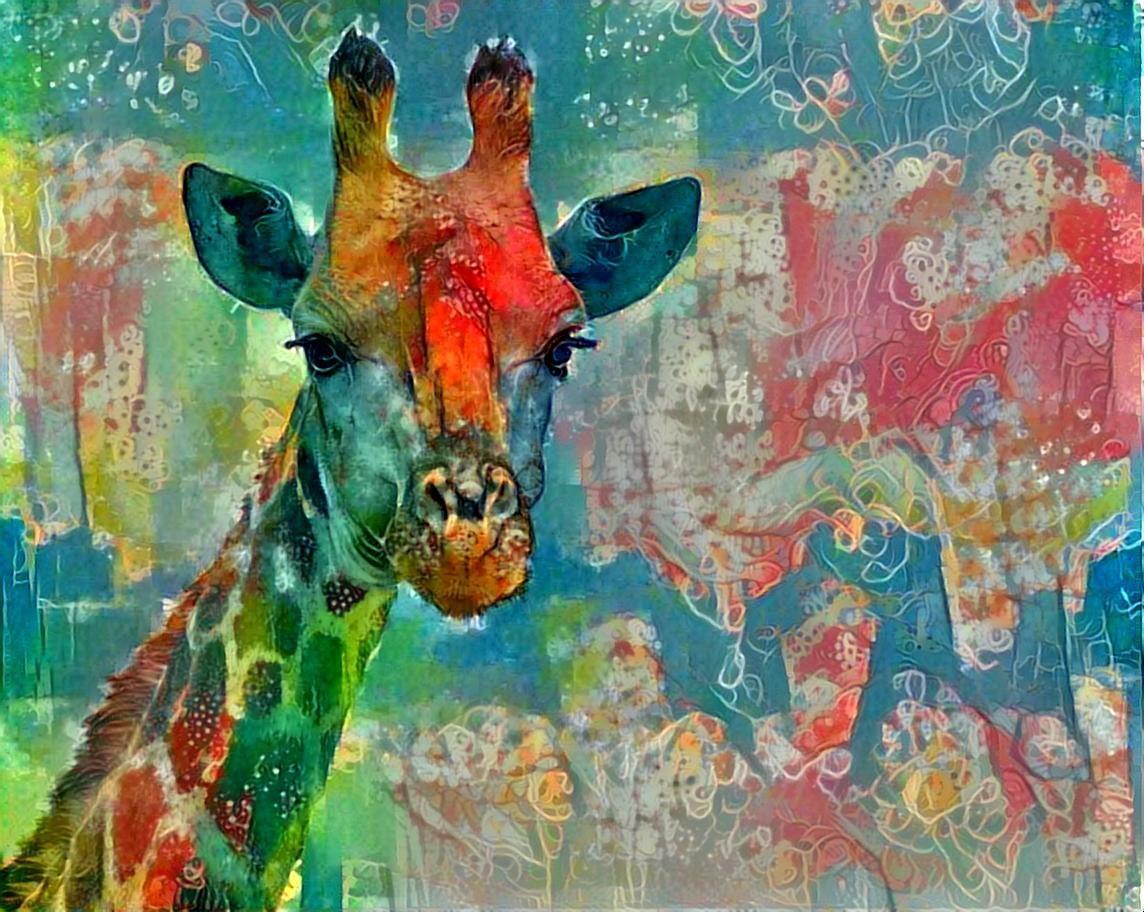 Giraffe _4405
