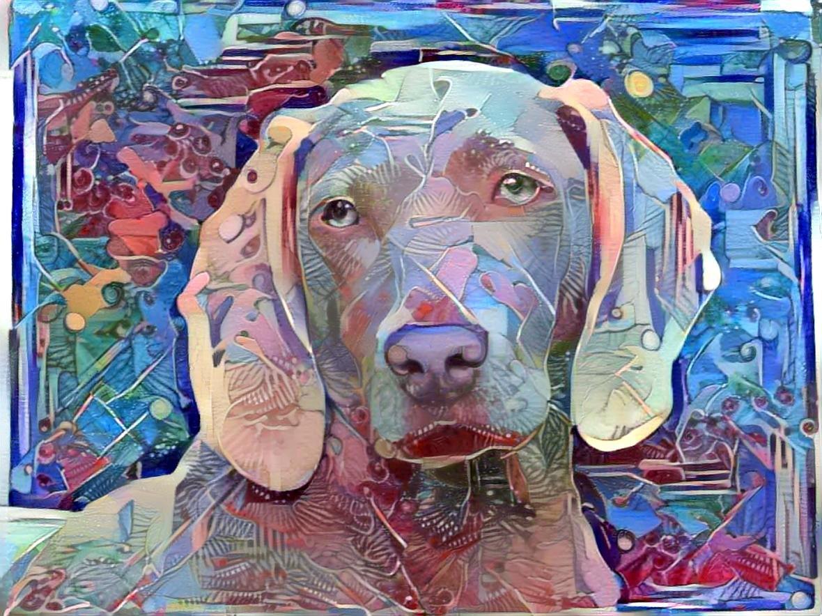 Dog_4494