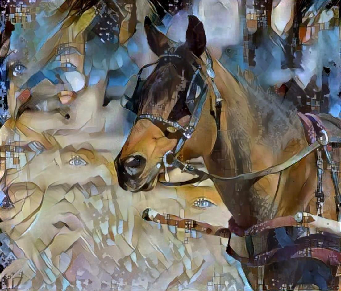 Horse_4688