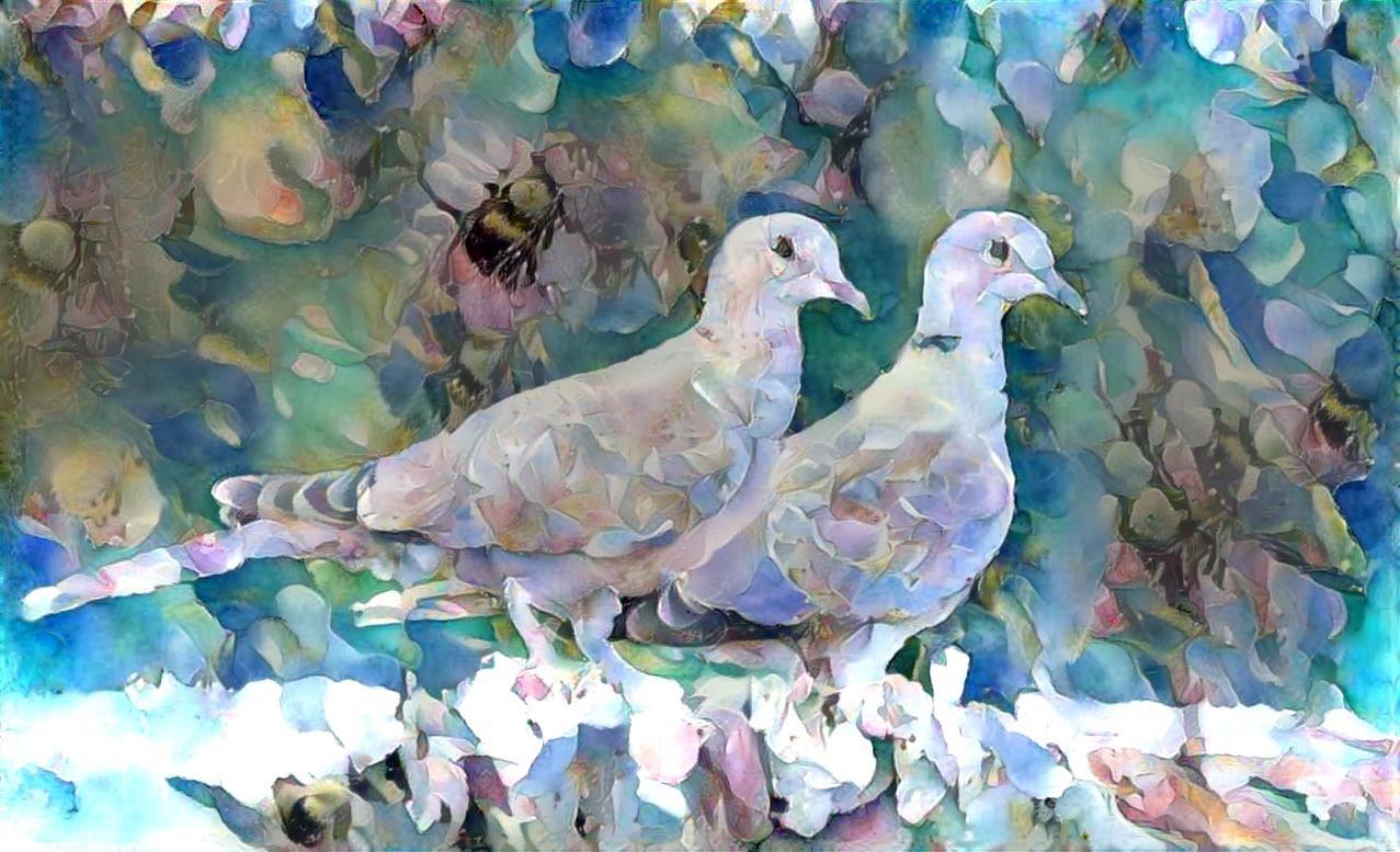 Bird_5162