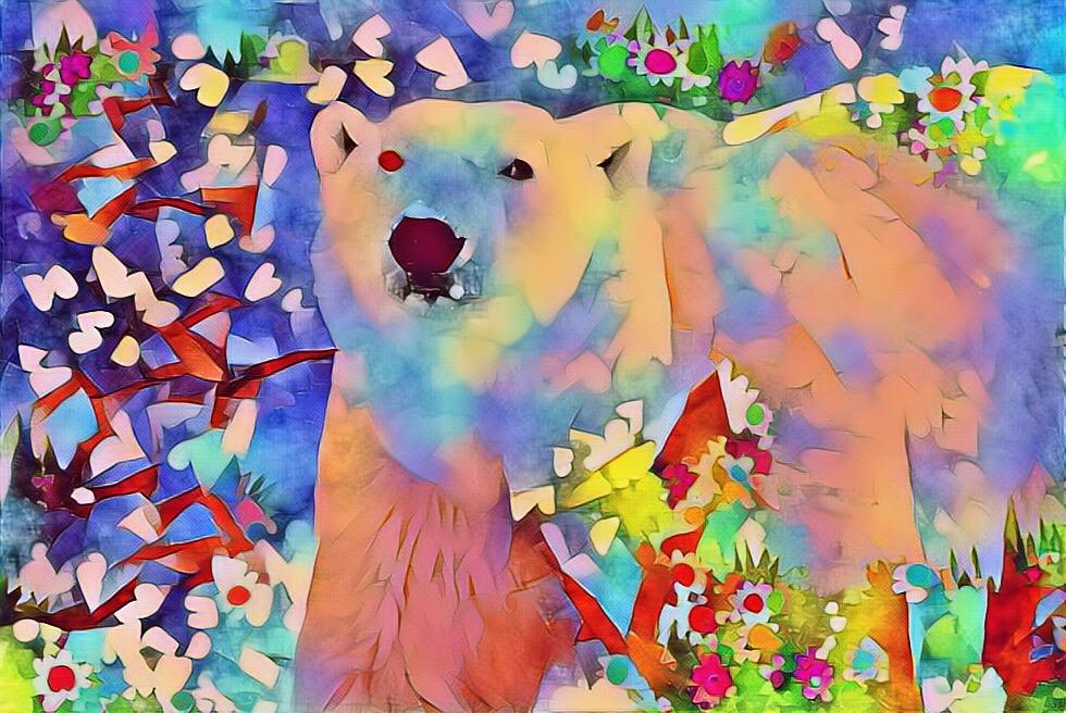 Polar Bear_8519D