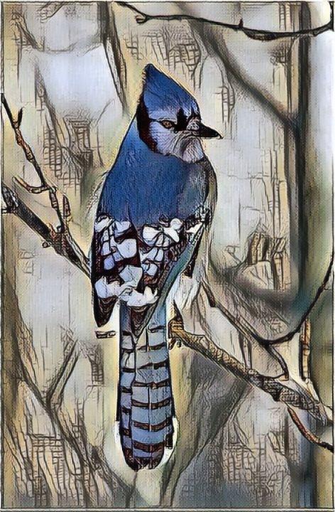 Bird_0926