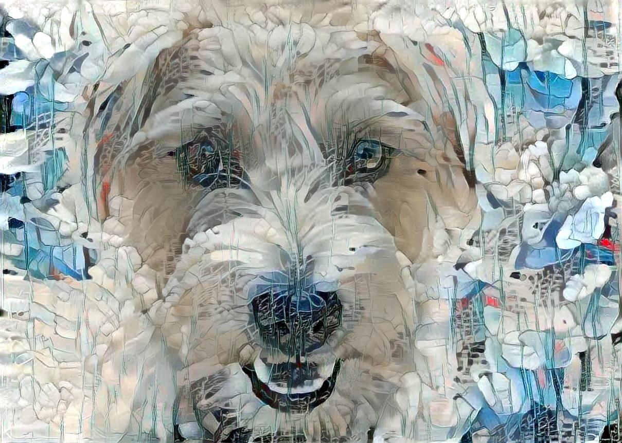 Dog _1003