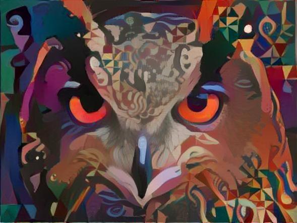 Owl_2066