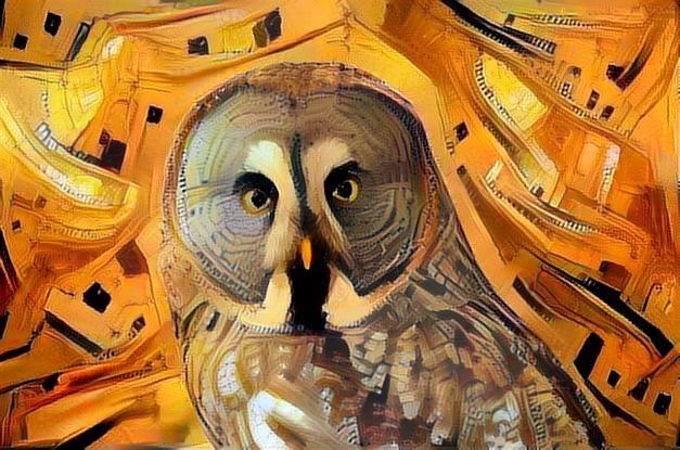 Owl_2244