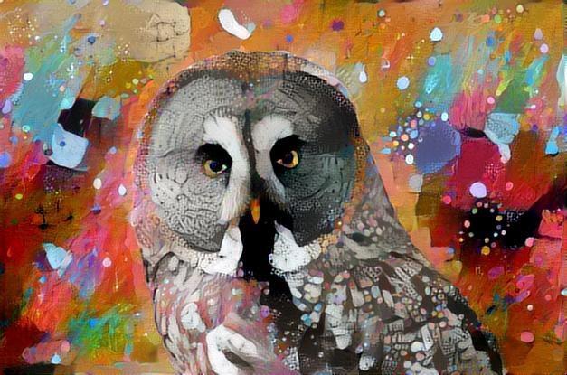 Owl_2257