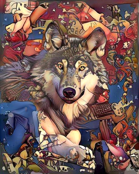 Wolf_2259