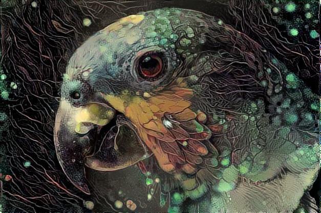 Parrot_2261