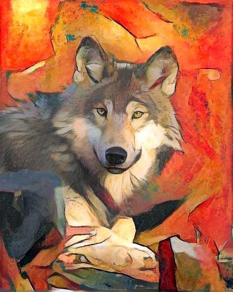 Wolf_2269