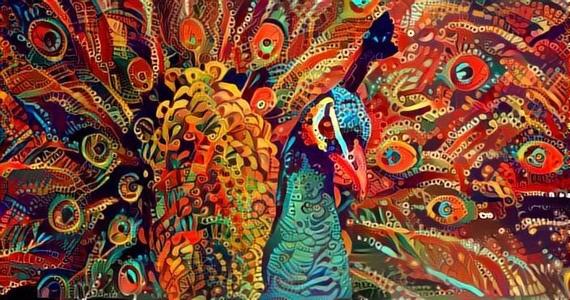 Peacock_2274