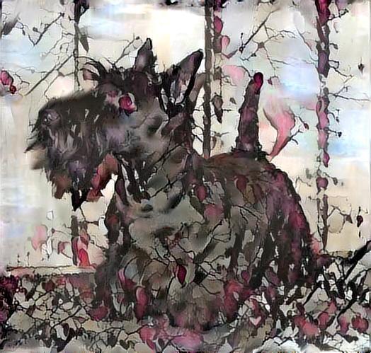 Dog_2625
