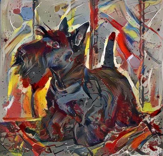 Dog_2626