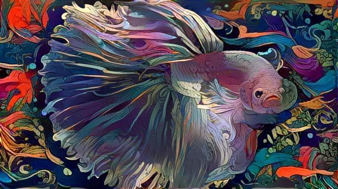 Fish_2651