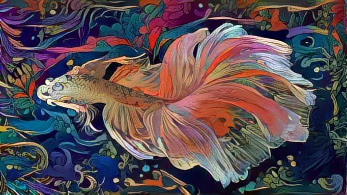 Fish_2655