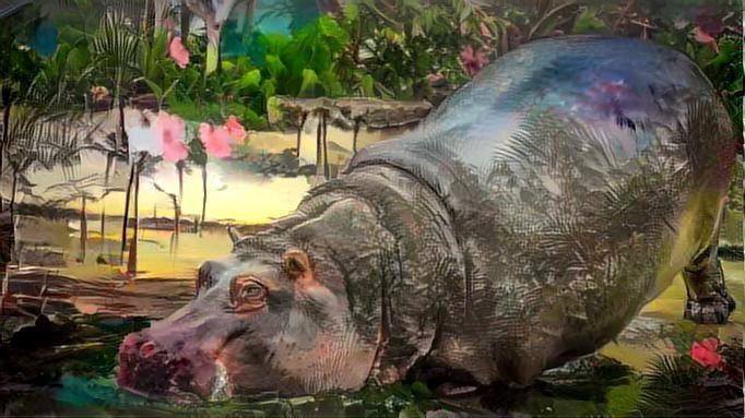 Hippo_2707