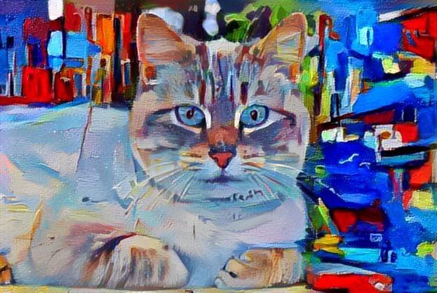 Cat_2708