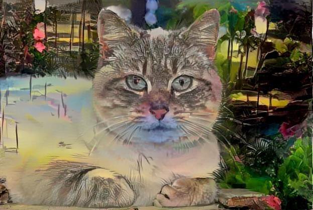 Cat_2731