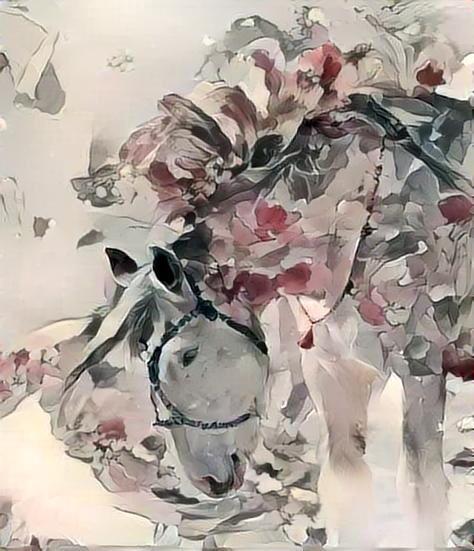 Horse_2906