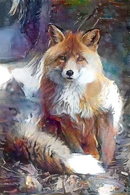 Fox_2944