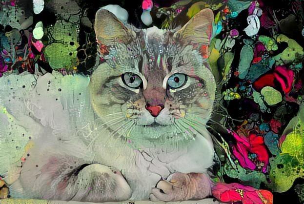 Cat_3022