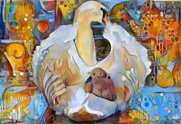 Swan_3028