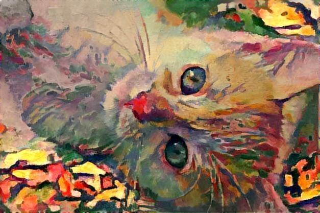 Cat_3029