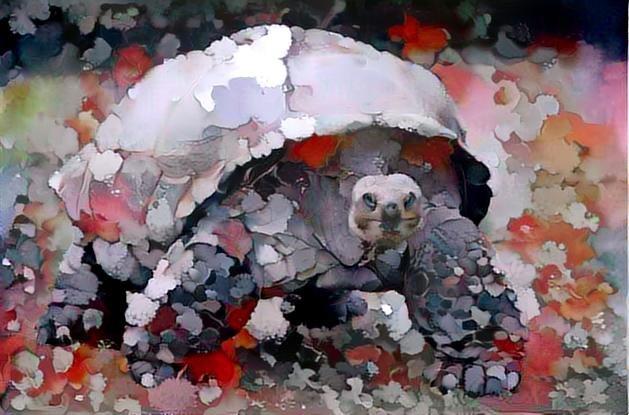 Turtle _3036