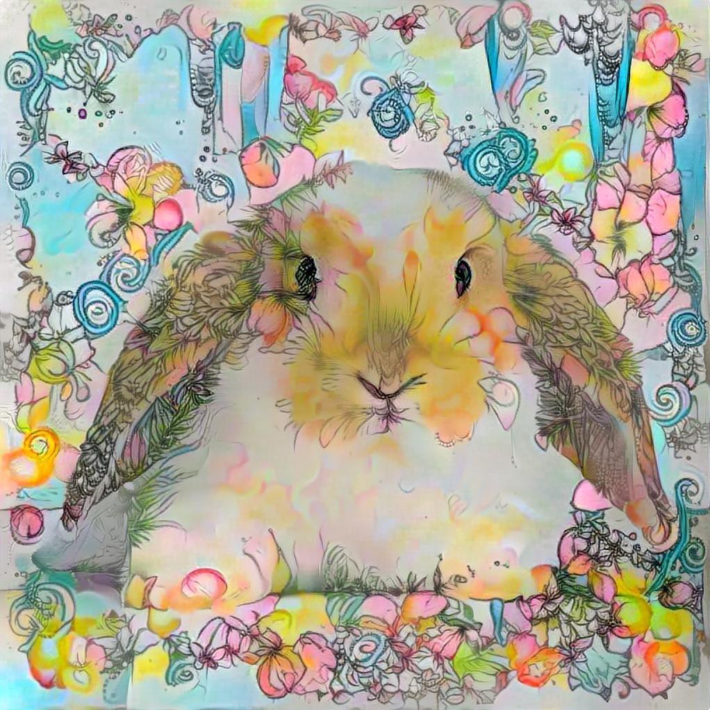 Rabbit_3480