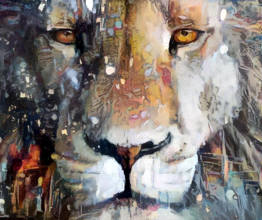 Lion_3562