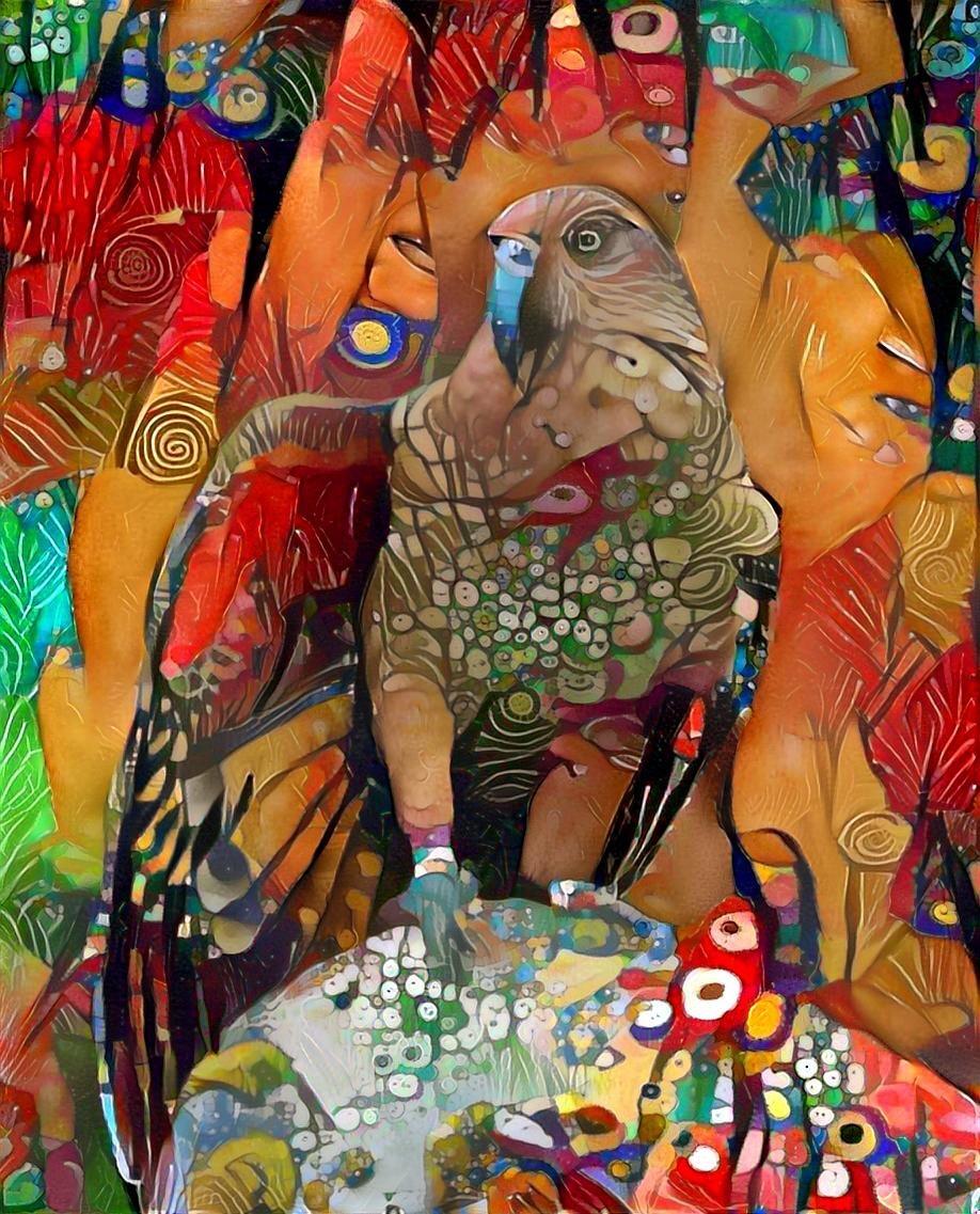 Bird_3589