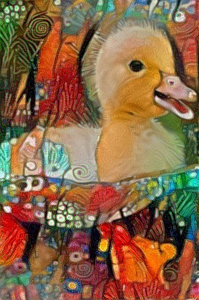 Duckling_3675