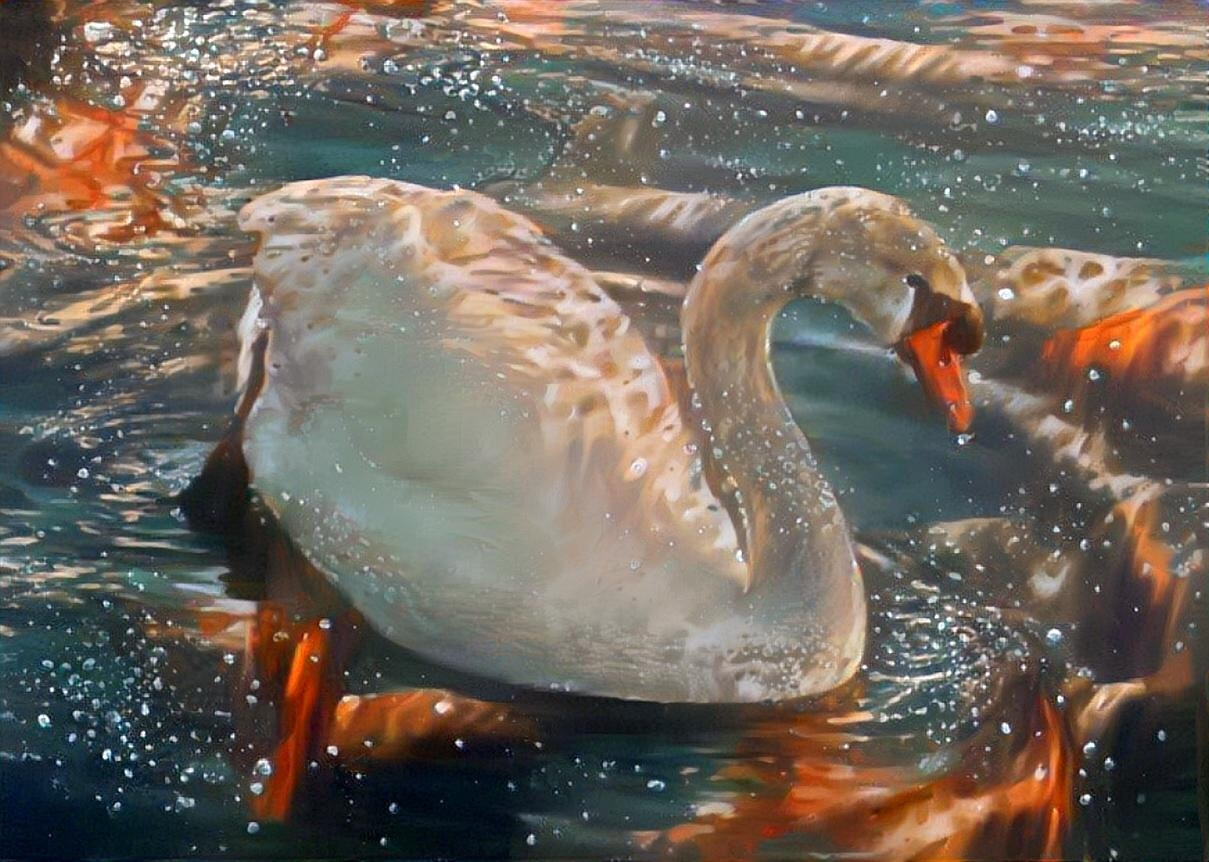 Swan_3720