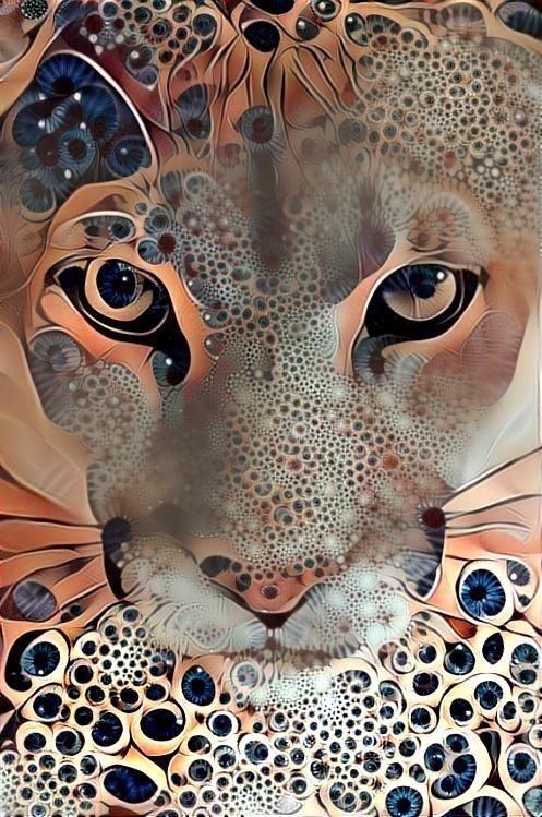 Lion_3741