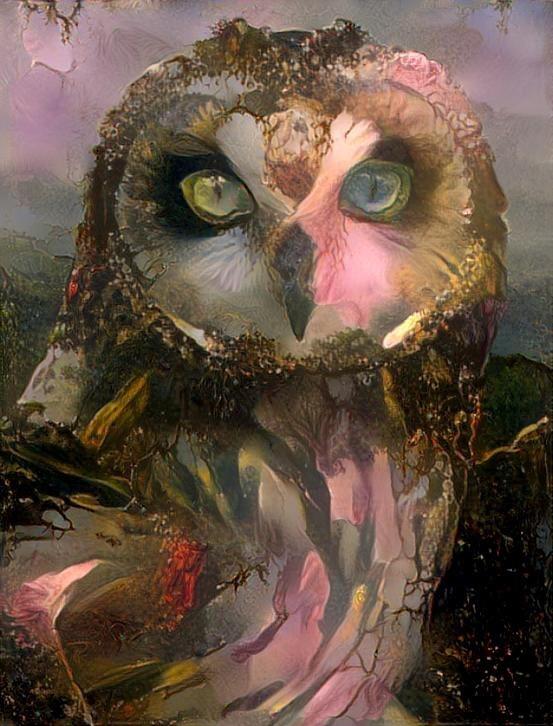 Owl_3743