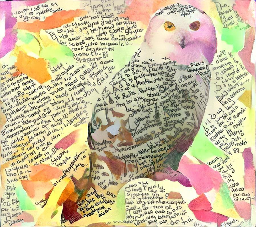 Owl_3863
