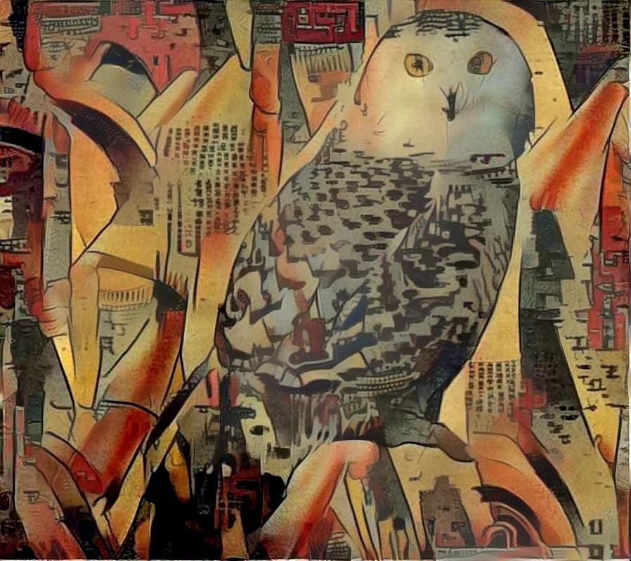 Owl_3864