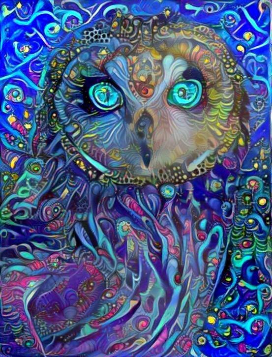 Owl_3873