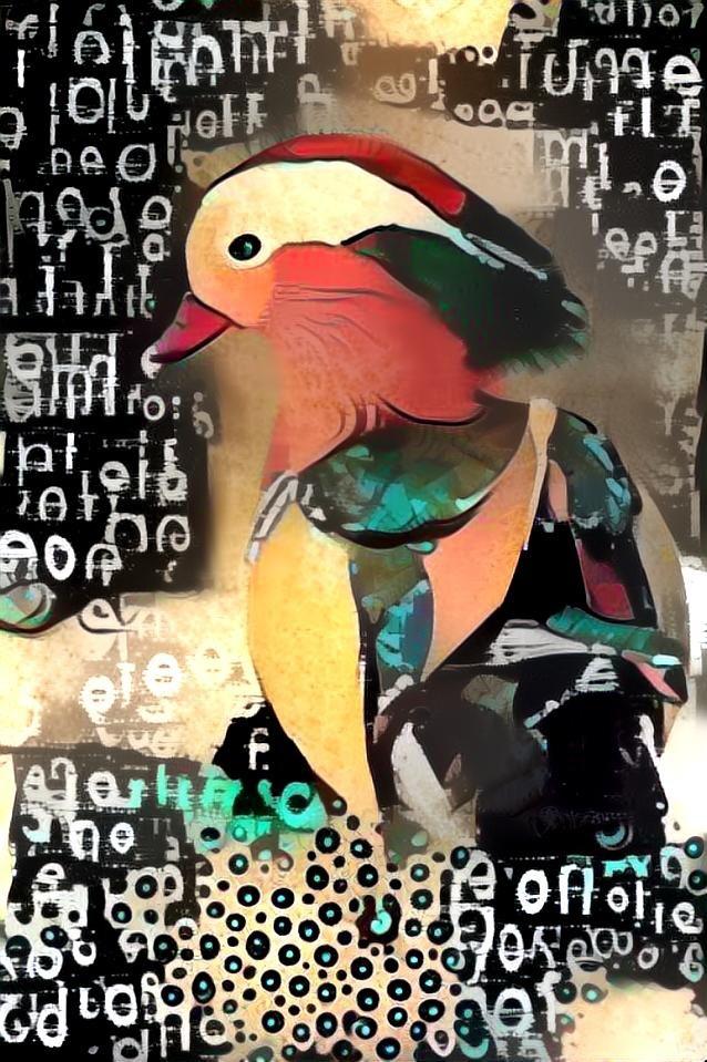 Duck_3915