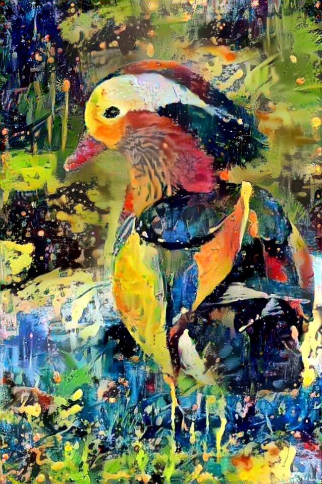 Duck_3939