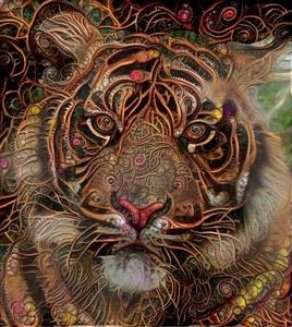 Tiger_3946