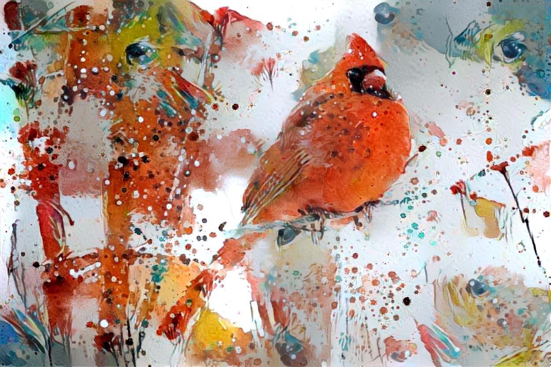 Bird, Cardinal_4017