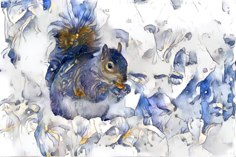 Squirrel_4018
