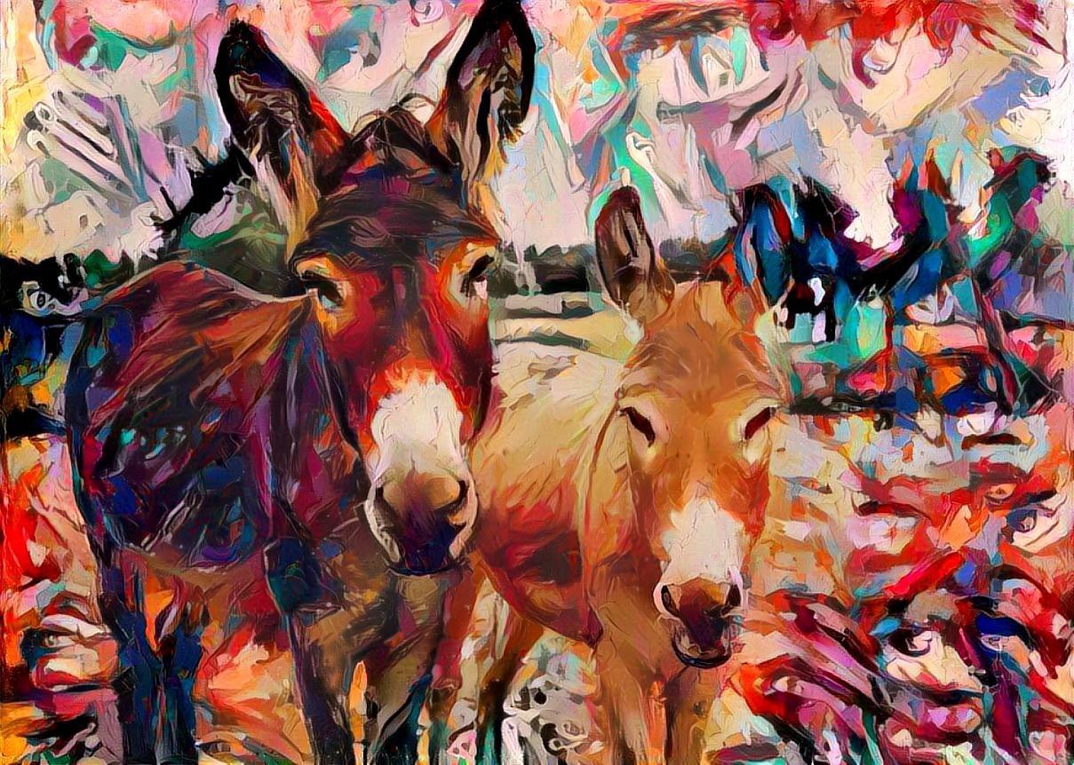 Donkey_4073