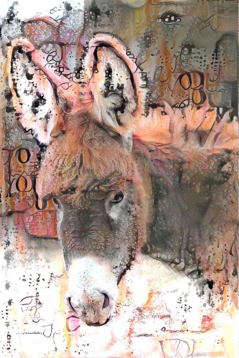 Donkey_4091
