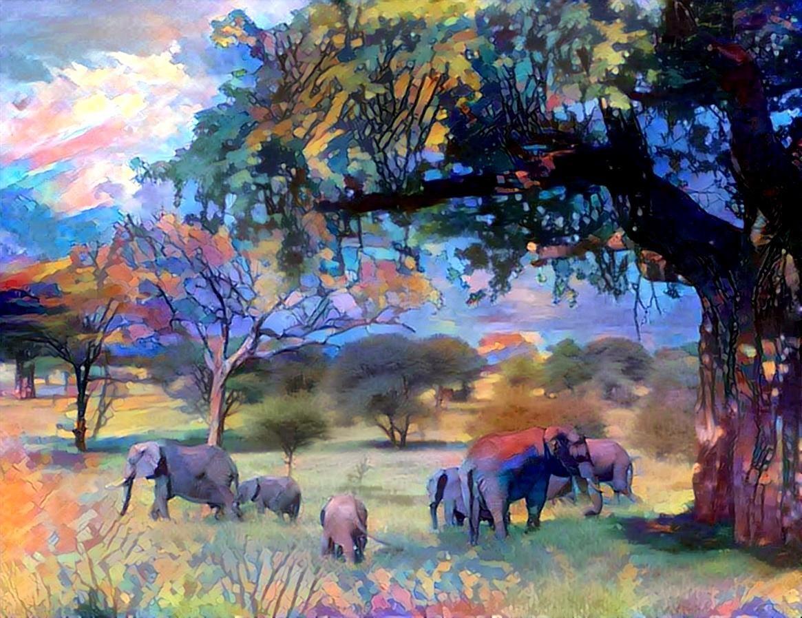 Elephant_4227