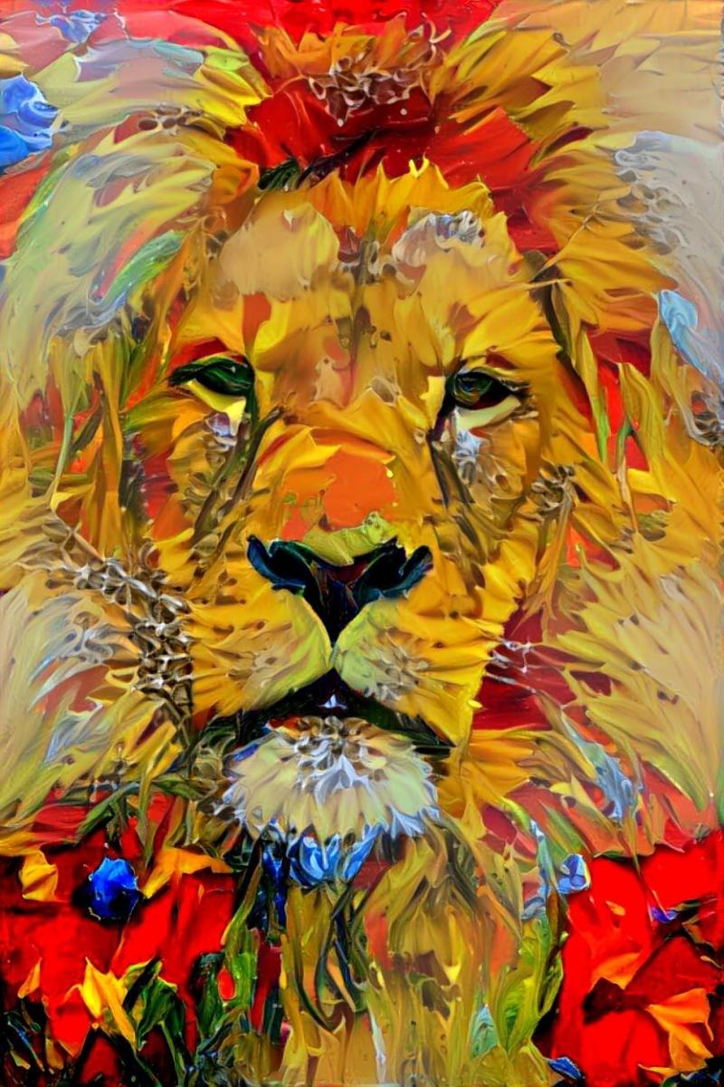 Lion_4261