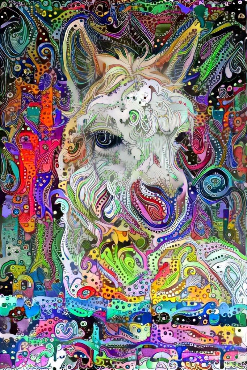 Llama_4273