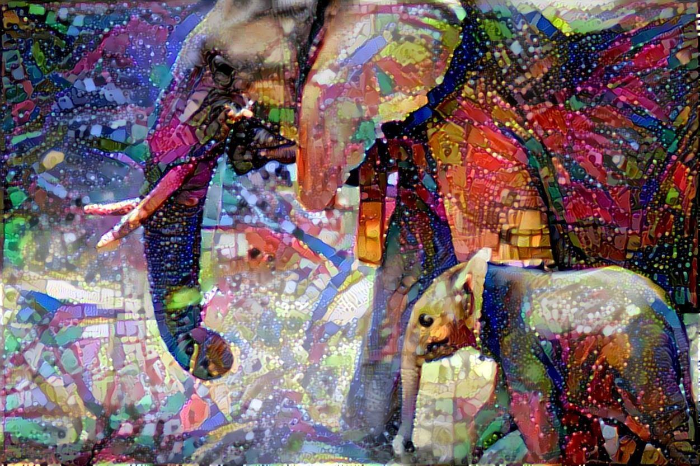 Elephant_4277